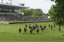 saint-cloud course largeL