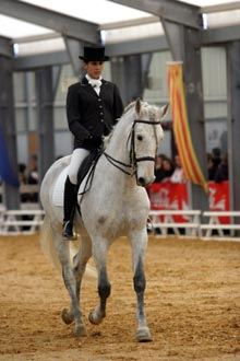 passion7-masters iberique C