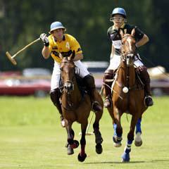 polo-2joueurs largeP
