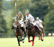 chantilly-polo mediumL