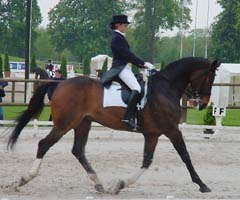 Jardy-Chevanne-Calimucho trot