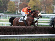 auteuil8-tell no one mediumL