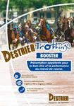 destrier-trotting booster mediumP