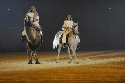 equitalyon8-spectacle-camel show team