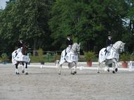grand national dressage-auvers8-remise mediumL