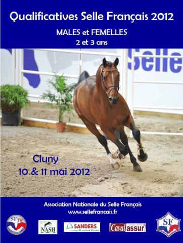 affiche cluny