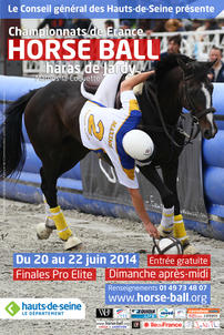 affiche horse ball jardy 2014 largeP
