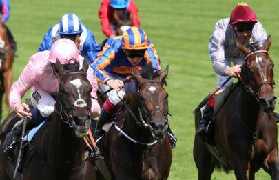ascot The Fugue, Magician et Trêve au premier plan largeL