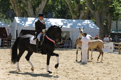 Rencontres equestres beaucaire 2018