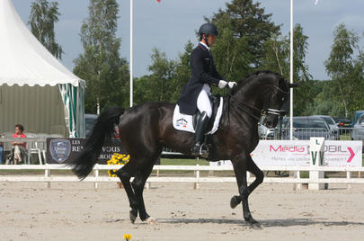 cdi vierzon 2014 Marc Boblet et Noble Dream*Concept Sol  largeL