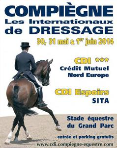 compiegne 2014 largeP