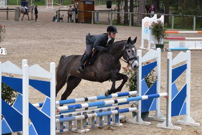 fontainebleau 2014 Farah ibah SV Hunter 4 ans largeL