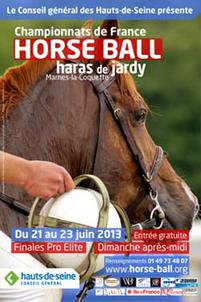 jardy 2013 horse ball affiche largeP