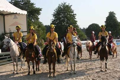 lamotte 2013- pony games- yellows largeL