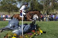 lexington-fox pitt-cool mediumL