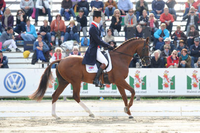 malmo William Fox Pitt et Chili Morning largeL