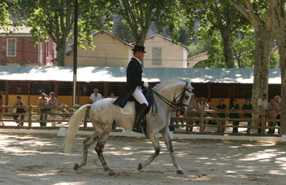 Rencontres equestres beaucaire 2016
