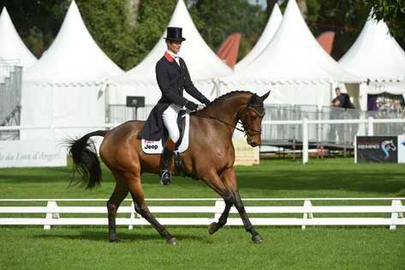 Mondial du Lion13-William-Fox-Pitt-&-Henton-For-Fun largeL