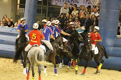 montpellier 2012 horse ball france largeL