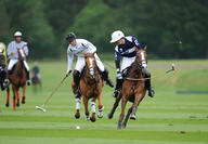 polo cartier queens cup  mediumL