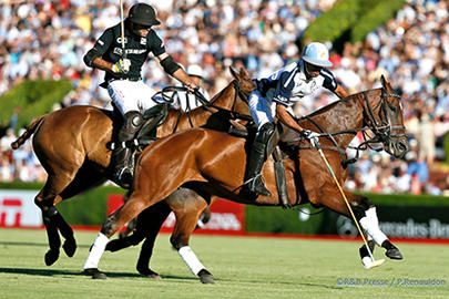 polo ellerstina action largeL