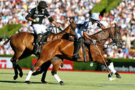 polo ellerstina action mediumL