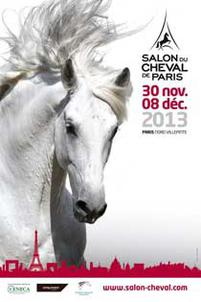 salon 13 largeP