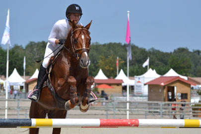 sologn pony 2011 Royal Aronn henry largeL