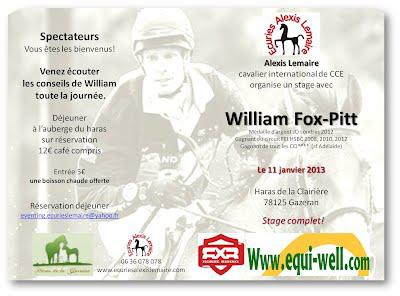 stage fox pitt largeL