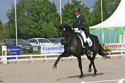 vierzon 2014 Marc Boblet et Noble Dream  largeL