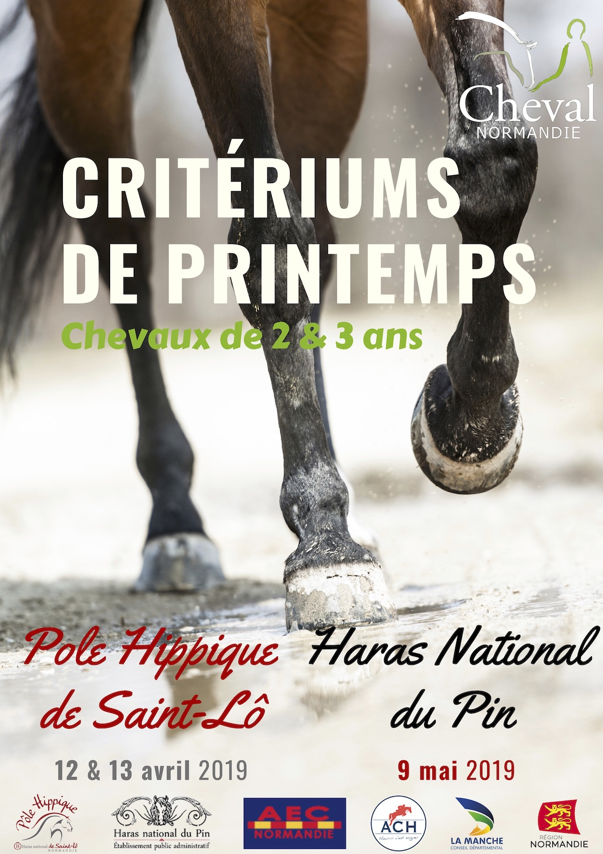 Affiche cirtérium de printemps cheval normanndie avril 2019