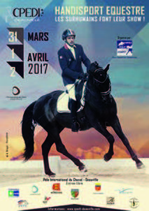 affiche cpdei 2017 largeP