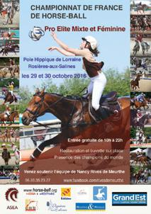 Affiche Horse Ball Rosières 2016 largeP