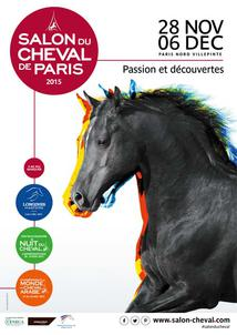 affiche salon 2015 largeP