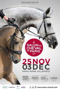 affiche salon 2017 largeP