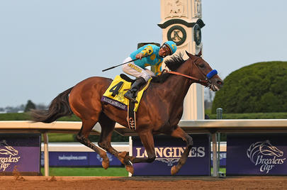 American Pharoah largeL