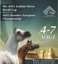 arabian horse show smallP