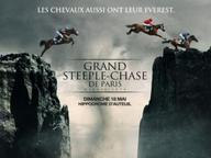 auteuil 2015- Grand Steeple de paris mediumL