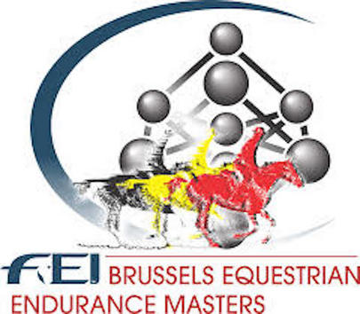 Brussels Equestrian Endurance Masters 2017 largeL