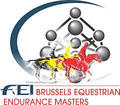Brussels Equestrian Endurance Masters 2017 smallL
