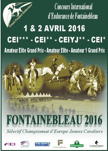 CEI fontaienbelau 2016 largeP