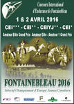 CEI fontaienbelau 2016 mediumP