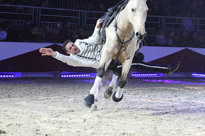 cheval passion 2017 Real Horse largeL