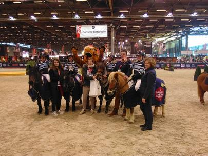 Cross indoor shetland salon du cheval 2016 largeL