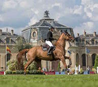 CSI 5 Chantilly mediumL