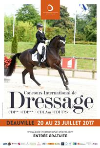 Dress In Deauville 2017 largeP