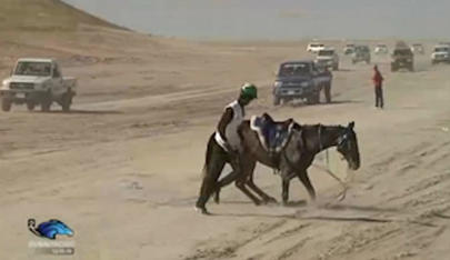 dubai racing tv largeL