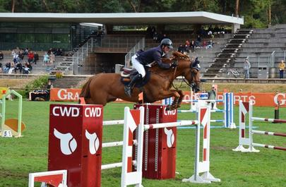 Fontainebleau 2015- Guy Williams et Golddigger largeL