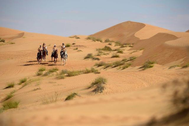 Gallops of Morocco