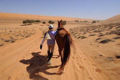 Gallops of Morocco largeL